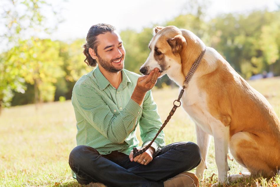 Как выбрать собаку для пожилого человека: подходящие породы собак для пенсионеров