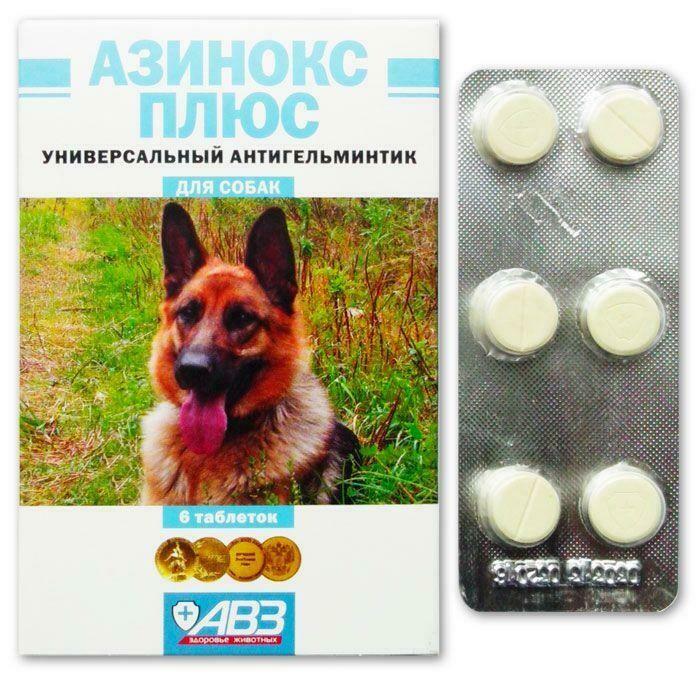Топ-21 средство от глистов для собак