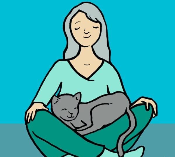 Как показать кошке, что человек её любит