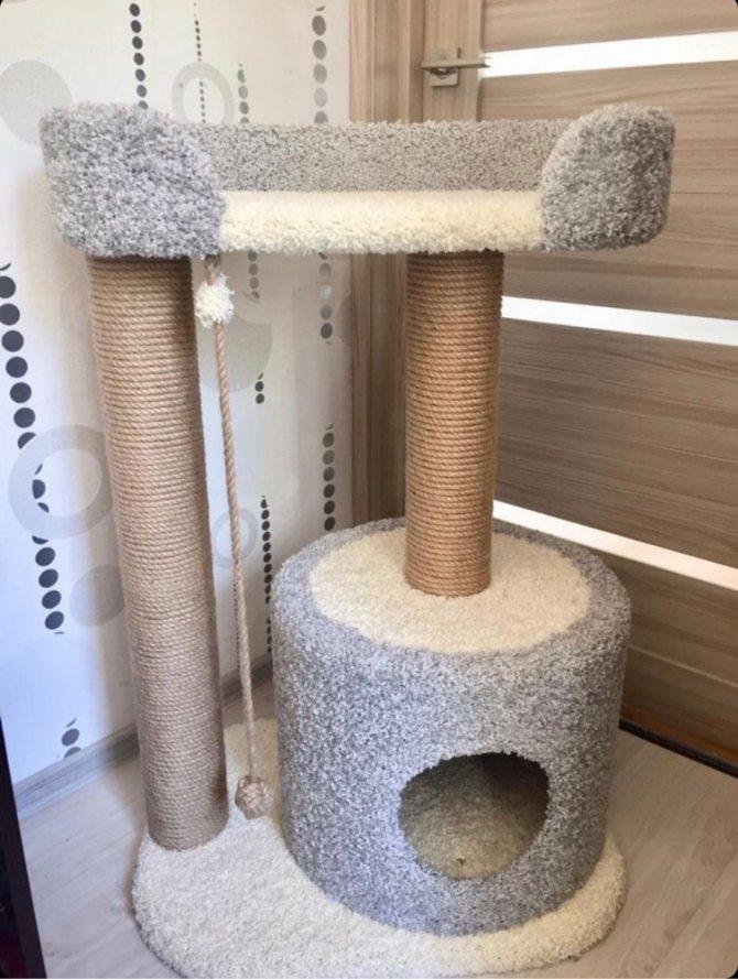 Когтеточка для кошек своими руками: основной способ уберечь поверхности в доме – советы по ремонту