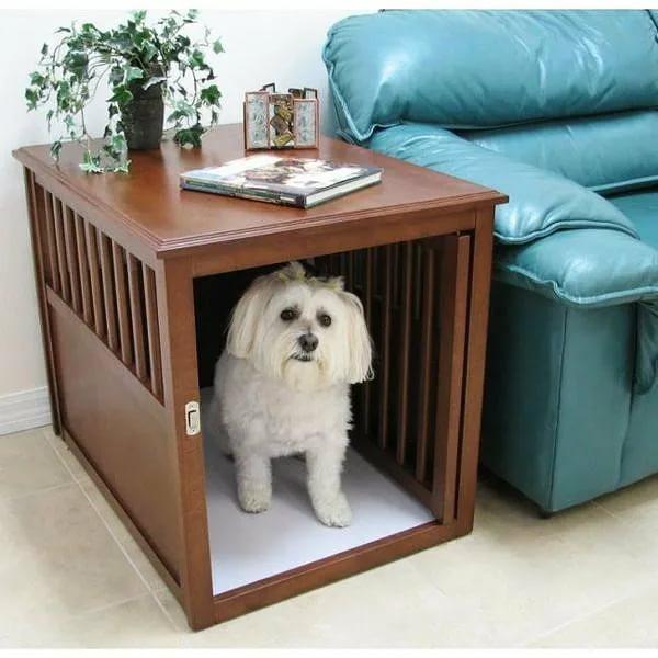 Породы собак для квартиры – как выбрать, советы и рекомендации